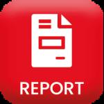 icona modulo report